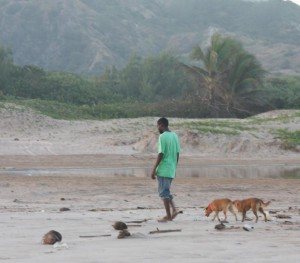 Boy and two dogs walking the beach