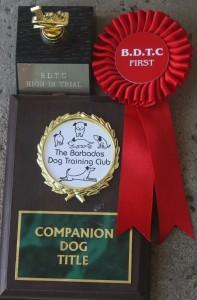 Bouvier Des Flandres and C.D. title
